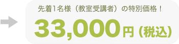 特別価格33,000円
